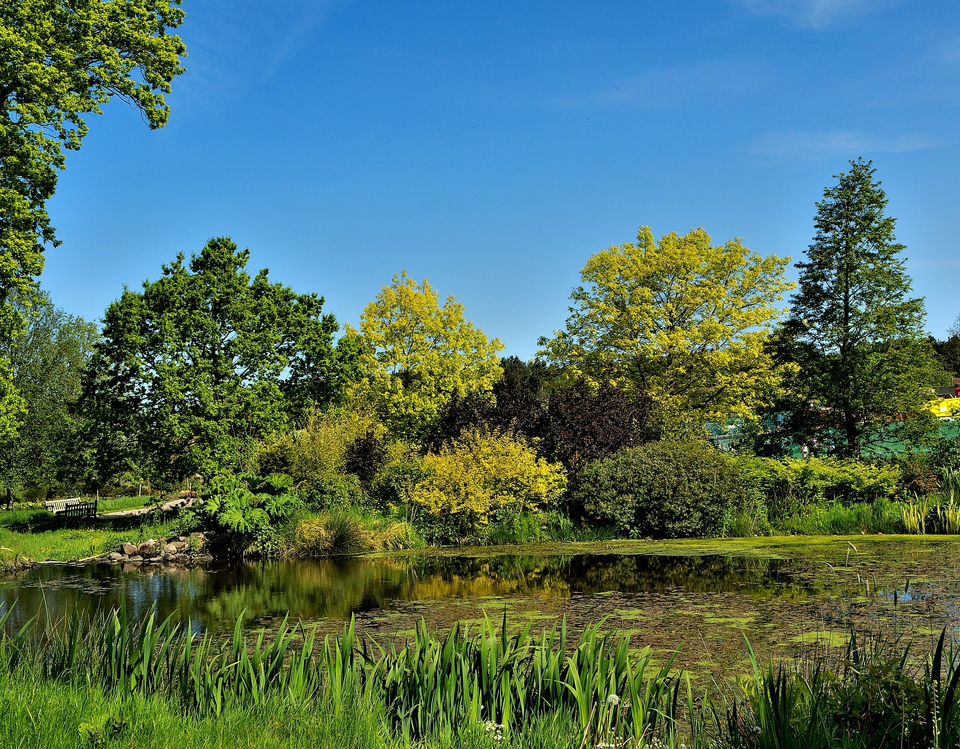 A Brief History of RHS Harlow Carr