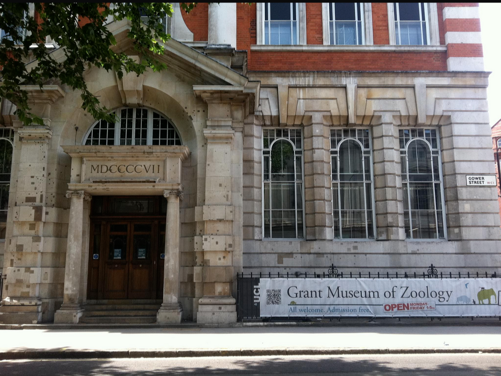 Grand Museum of Zoology